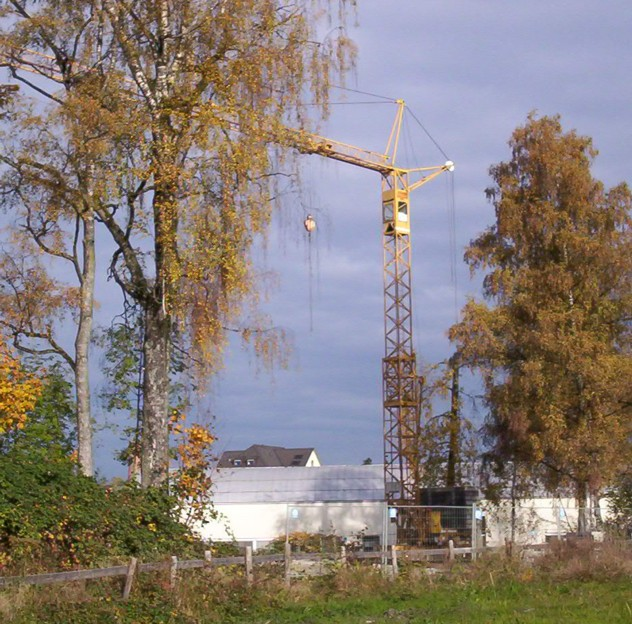 2005/10/post-52-1130323457.jpg