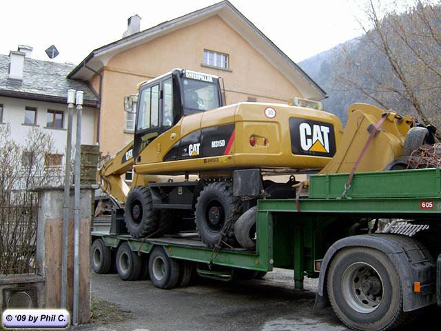 cat_315D.jpg