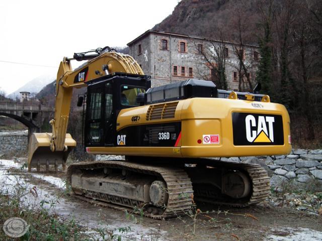 cat_336d_3.jpg