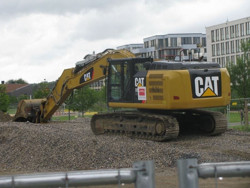 Cat 329.jpg