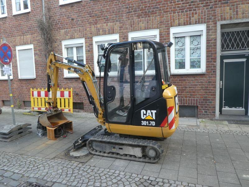 cat 301, 7.jpg