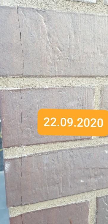 IMG-20200924-WA0021.jpg