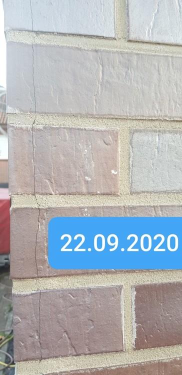 IMG-20200924-WA0022.jpg
