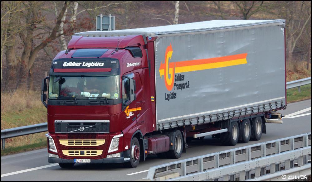 Volvo_FH460_Galliker_Slowakei.thumb.jpg.6e1da107db243c5a10fde2c7f735c293.jpg