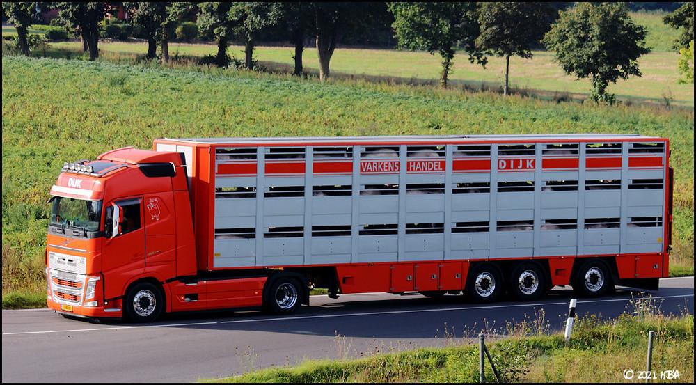 Volvo_FH460_Tiertransport_Niederlande.thumb.jpg.bb11f4b3cb59c023dbf61bc93468c179.jpg